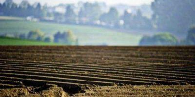 Кабмін передав землі постійного користування (0,5 млн га) у власність фермерів