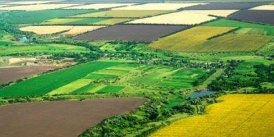 У 2019 році Уряд передасть державні сільгоспземлі у комунальну власність 141 ОТГ, які...