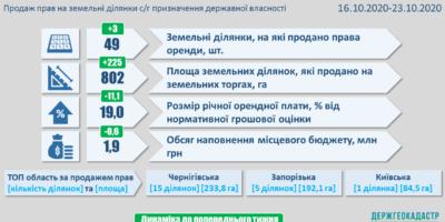 Результати земельних аукціонів за період з 16 по 22 жовтня