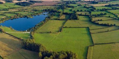 Підсумки півріччя: У Державному земельному кадастрі зареєстровано 684,2 тис. земельних...